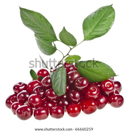 sweet cherries fruits heap pile close up isolated on white background