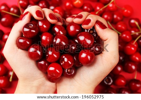Sweet cherries in female hands, close up - stock photo