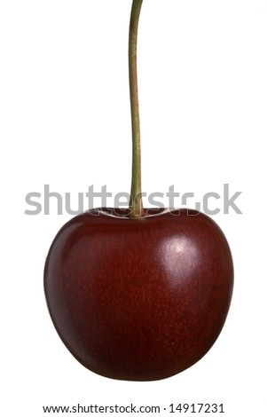 Sweet cherry hanging isolated on white
