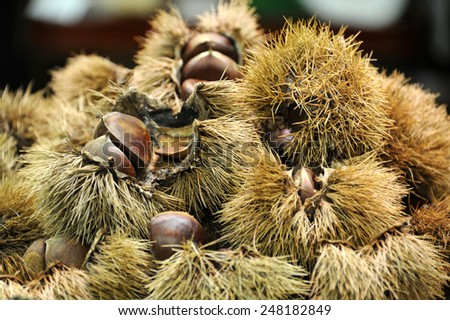 Sweet chestnuts in the rind with selective focus - stock photo