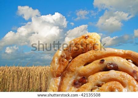 Sweet cinnamon raisin bun on field of ripened grain - stock photo