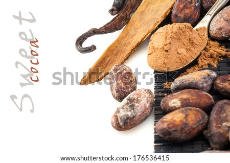Sweet cocoa powder and cocoa beans with cinnamon and vanilla around isolated on white background