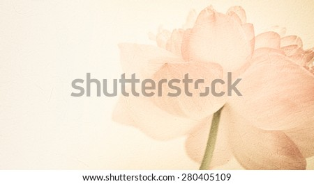 sweet color lotus in soft color and blur style on mulberry paper texture - stock photo