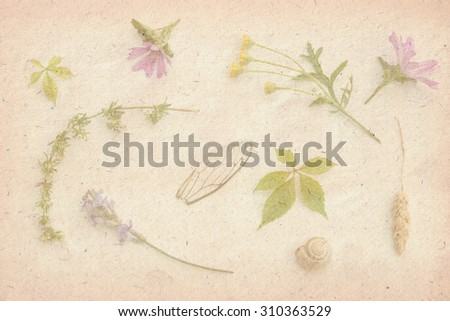 Sweet color, pastel tone, wild flowers with paper texture for the soft background