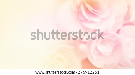 sweet color roses in soft and blur style on mulberry paper texture for background     - stock photo