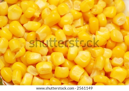 Sweet corn kernels arranged as background - stock photo