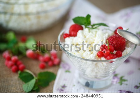 sweet curd in a bowl with berries - stock photo
