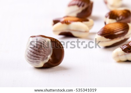sweet delicious gourmet chocolate seashell on white table