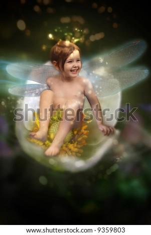 Sweet fairy on white flower - stock photo