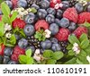 sweet forest berries with flower surface top view close up background - stock photo
