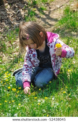 Sweet Paula picking spring flowers - stock photo
