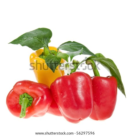 sweet peppers isolated on white - stock photo