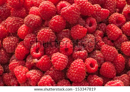 Sweet red raspberries as a background