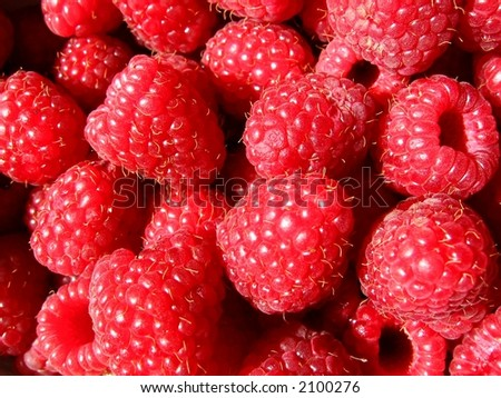 sweet red raspberries;  Rubus idaeus
