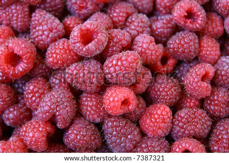 sweet red raspberries texture, Rubus idaeus, natural background - stock photo