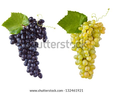 Sweet ripe grape with leaves on a white background. - stock photo