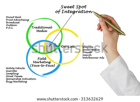 Sweet Spot of Integration	 - stock photo