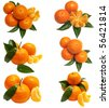 Sweet tangerine - stock photo