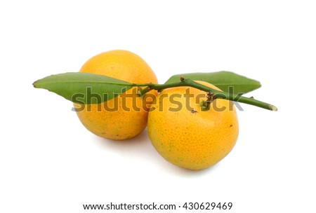 sweet tangerines isolated on white