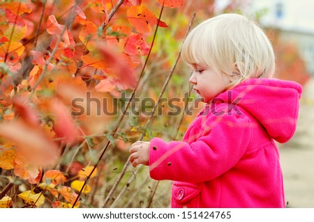 sweet toddler girl near fall bushes - stock photo