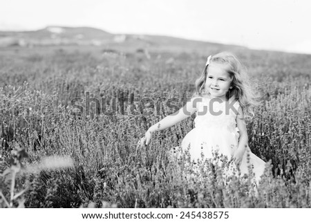 sweet toddler girl walking in lavender field - stock photo