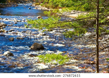 Swift River in White Mountain National Forest, New Hampshire, USA. - stock photo