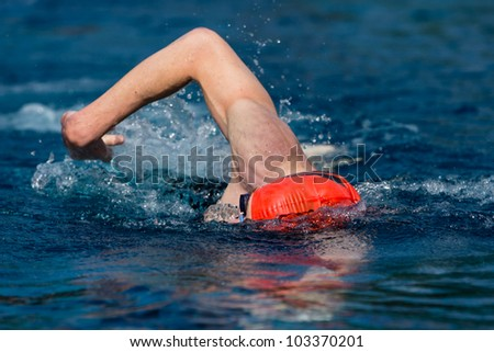 swimmer in a contest - stock photo