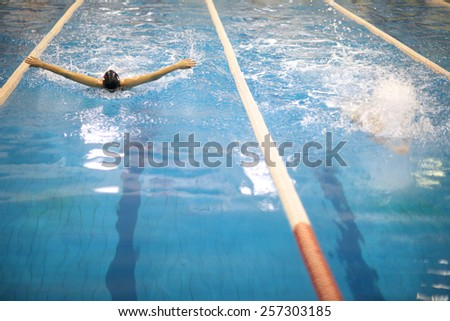 Swimming competition in butterfly stroke - stock photo