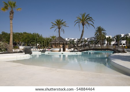 Swimming Pool and palm tree