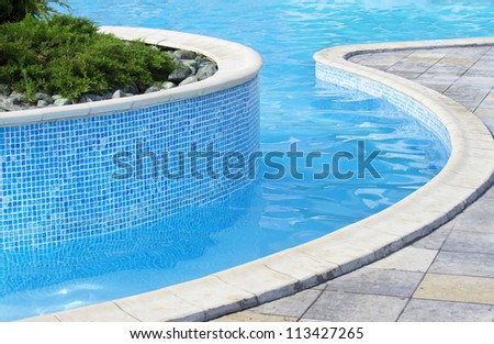 Swimming pool | Blue spa swimming pool with small pine tree inside - stock photo