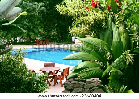 Swimming pool surrounded by lush tropical plants - stock photo