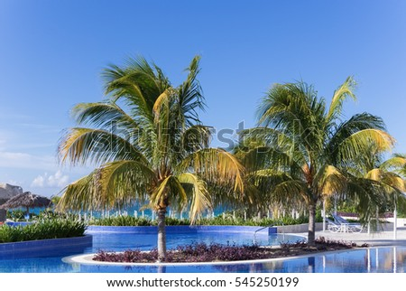 Swimming pool view with palms and sun lounger in Cuba - Serie Cuba 2016 Reportage