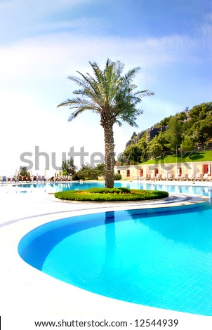 swimpool and palm tree on resort territory - stock photo