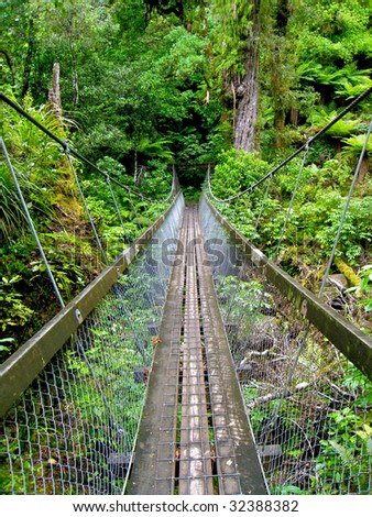Swing Bridge in New Zealand Forest