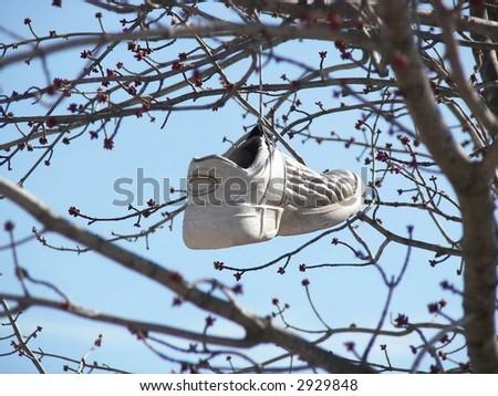 Swinging Sport Shoe - stock photo