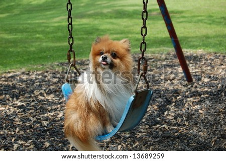 Swinging Tongue - stock photo