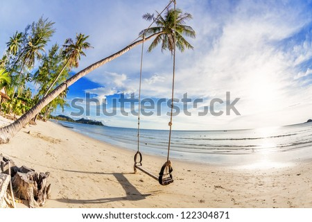 Swings and palm on the sand tropical beach. Fisheye look - stock photo