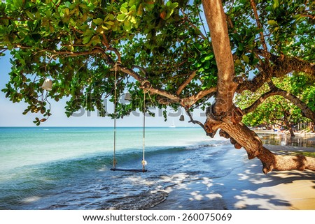 Swings at tree on the sand tropical beach - stock photo