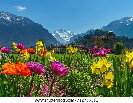 Alps Stock Images Royalty Free Images Amp Vectors