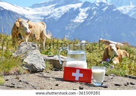 Swiss chocolate and jug of milk on the Alpine meadow. Switzerland - stock photo