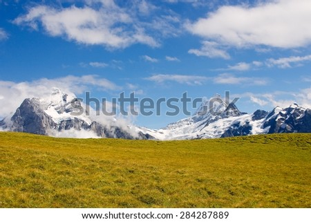 Swiss Mountain Meadow