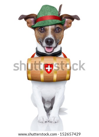 swiss rescue dog with a barrel and a green hat
