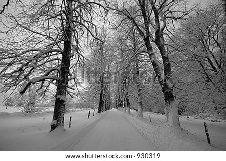 Swiss winter - stock photo
