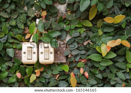 switch with leaf background - stock photo