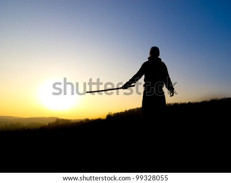 Swordsman silhouette - stock photo