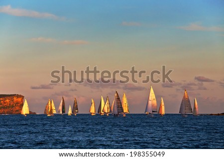 SYDNEY, AUSTRALIA - FEBRUARY 6, 2014: golden light shines on the sails of yachts from a local yacht club passing North Head and entering the harbour after an ocean race at sunset. - stock photo