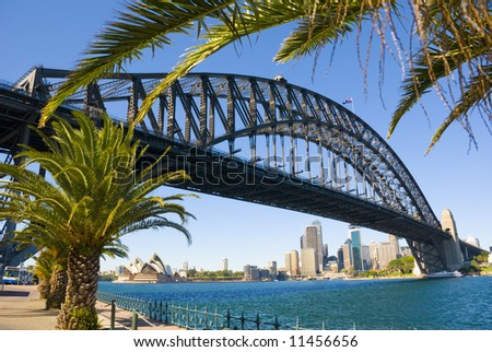 Sydney Harbour ( harbor ) with the Bridge, Opera House and Palm trees in foreground on a perfect blue sky day - stock photo