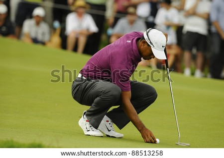 SYDNEY - NOVEMBER 10: Tiger Woods places his ball in the first round in the Australian Open at The Lakes golf course on November 10, 2011 in Sydney, Australia. - stock photo