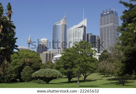 Sydney skyline from the royal Botanic gardens