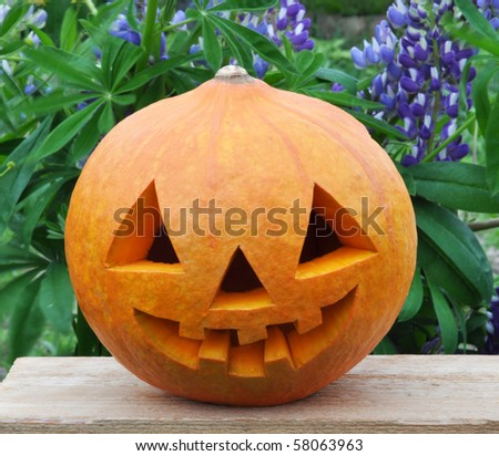 Symbol Halloween - a pumpkin O Lantern in on a board among flowers - stock photo